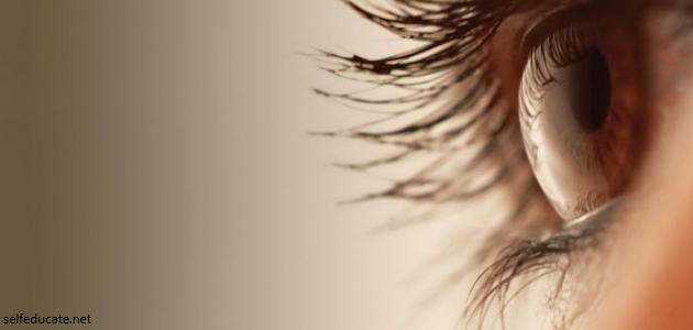 What causes eye blight
