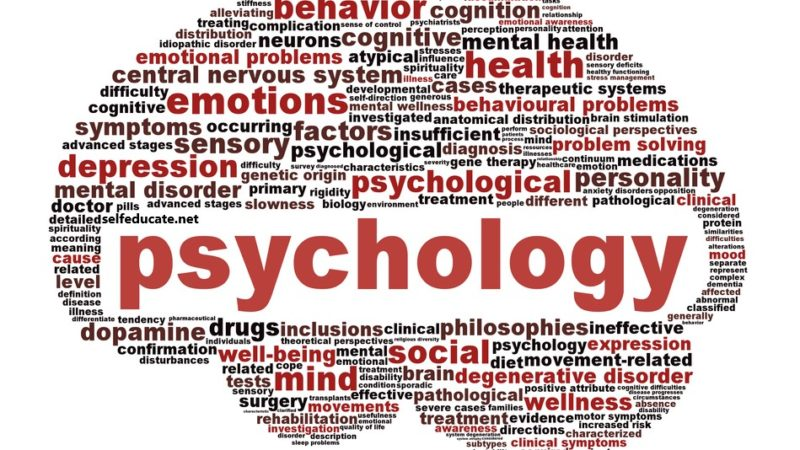 Top 10 facts about psychology