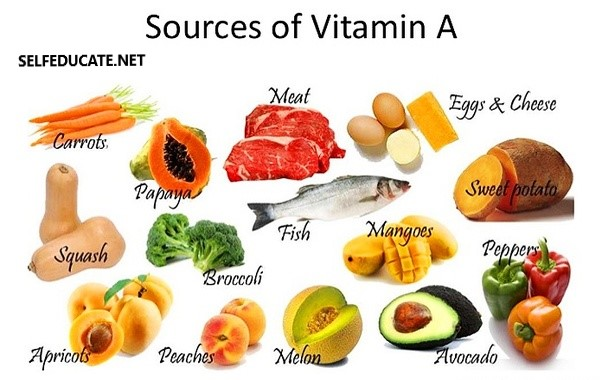 Greatest Vitamin Sources